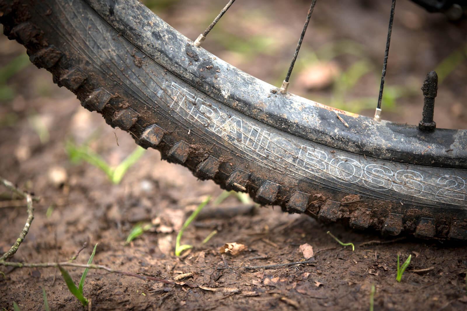 Calibre Sentry review WTB Tyres