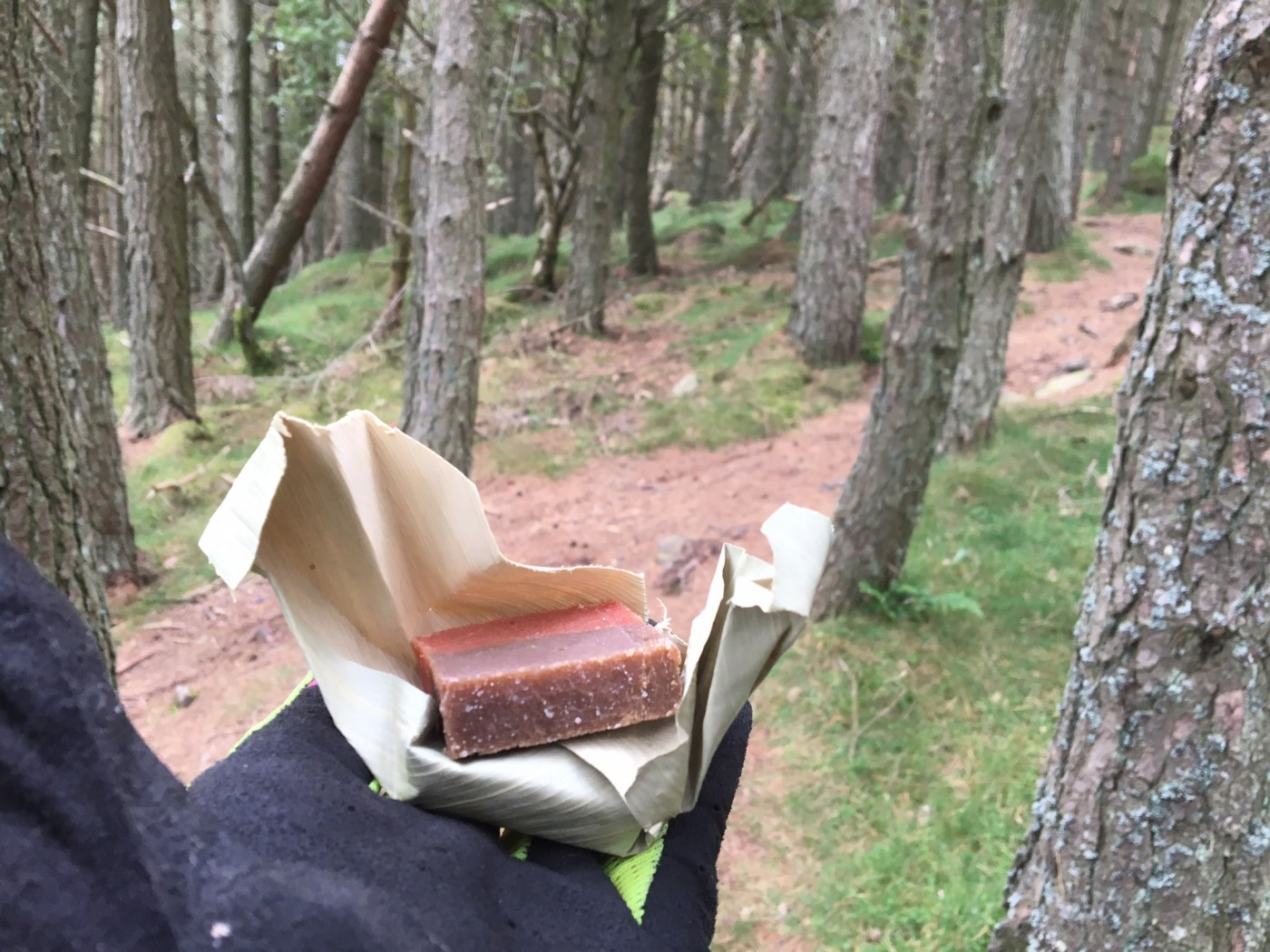 These are neat little parcels of energy – perfect for the trail. The coffee one came out on top for me!